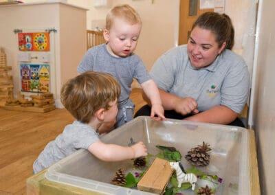 Children's Cognitive Skills